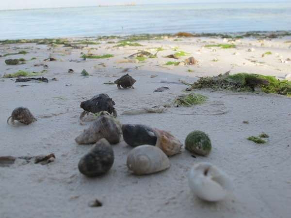 Lahunduru beach